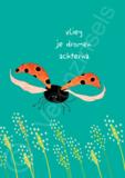 B168-034 - poster vlieg_