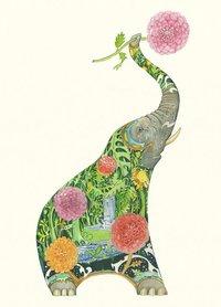 E085 - olifant