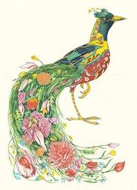 E087 - paradijsvogel