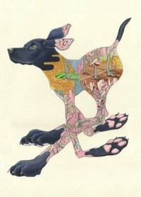 E025 - zwarte labrador