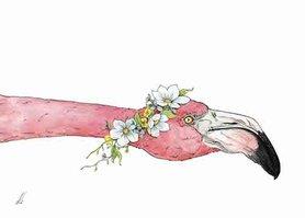 OTH030 - Flamingo Flowers