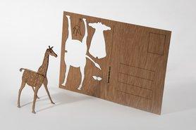 565 - giraffe