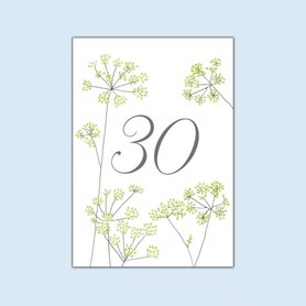 EH165 - Fennel 30