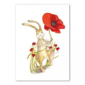 MP089 Happy hare
