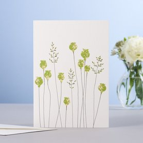 EH182- Poppyheads & grass