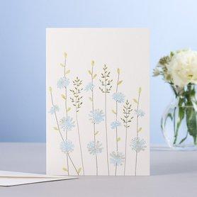 EH184- Chicory & grass