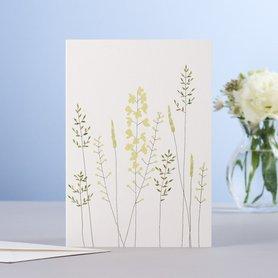 EH185 - Meadow flowers & grass