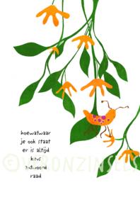Z008-010 - kaart raad