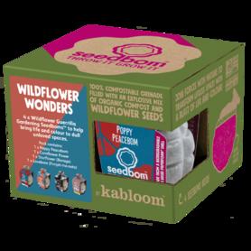4SBOM-WW - Wildflower Wonders