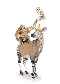 OTH052 - The Okapi