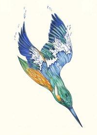 E139 - ijsvogel