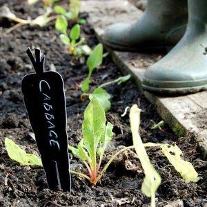 Plantenlabels - groente en kruiden