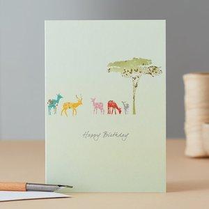 EH096 - Impala Birthday